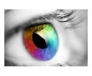 optica visual pilar